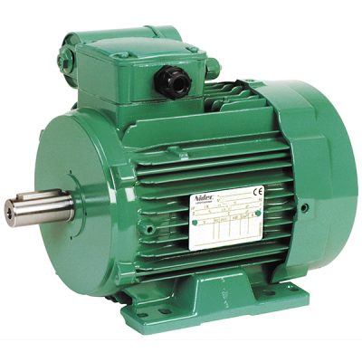 LS P TEFV Induction Motors with Permanent Capacitor